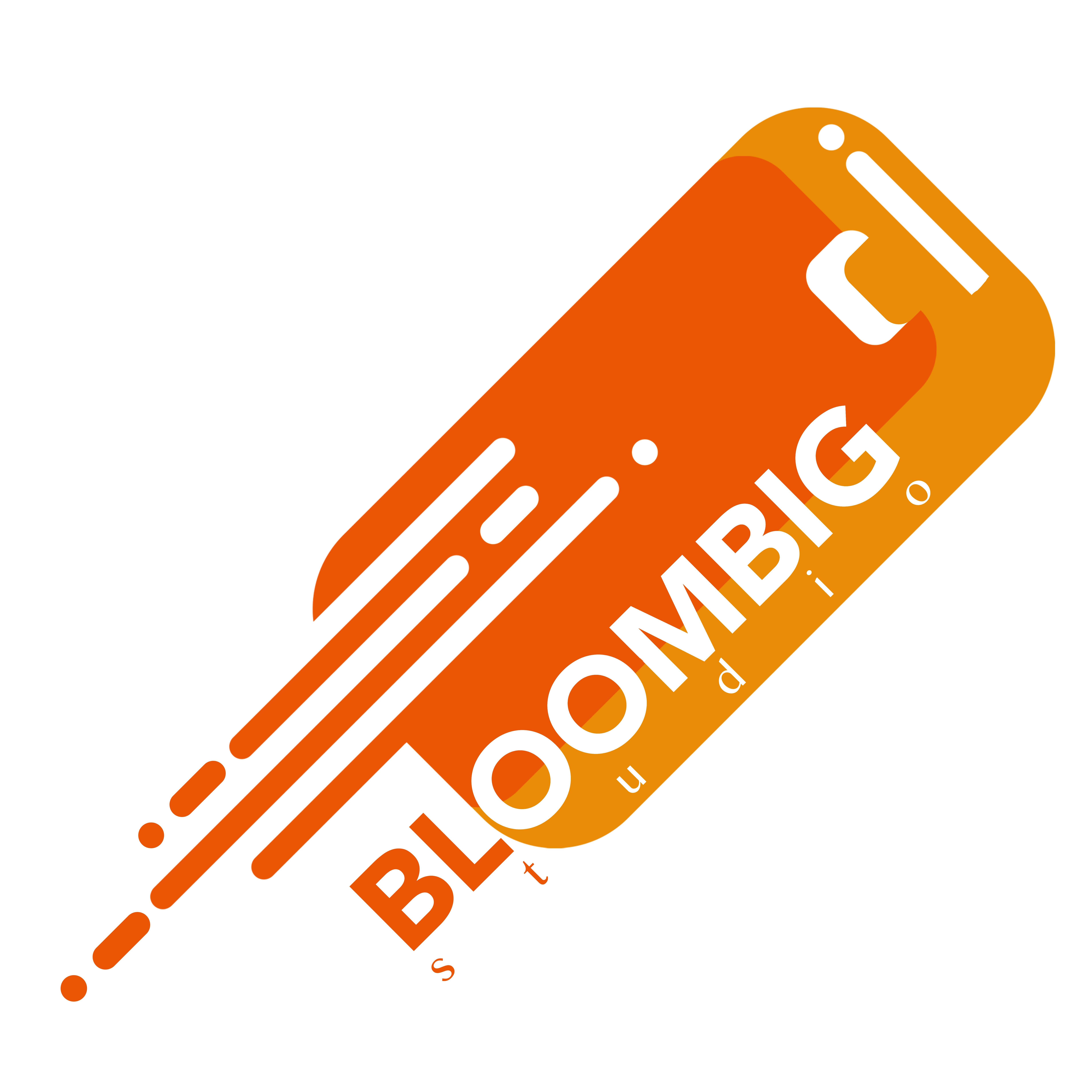 BloomBig Studio Logo